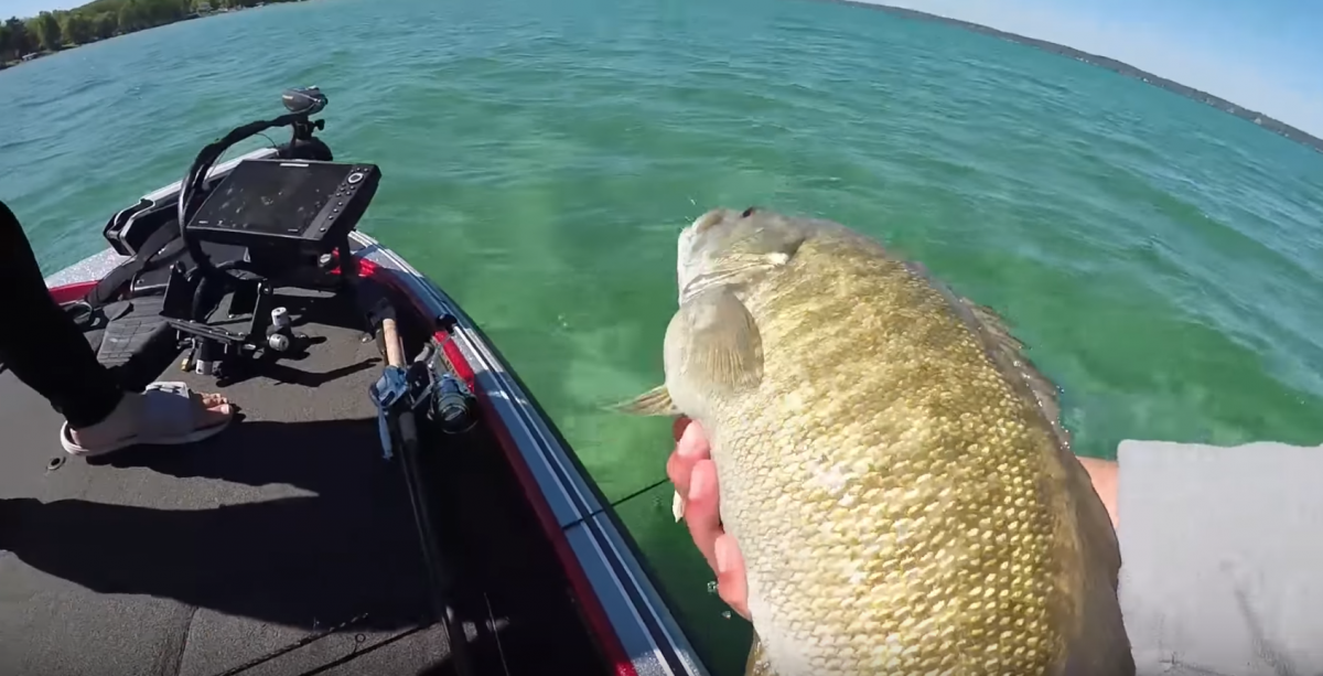 catching big bass on clear water lakes