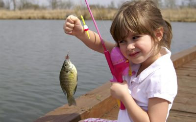 Best Fishing Poles for Kids and Young Adults (Updated: November 2019)