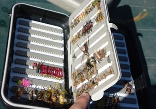 cf tackle box