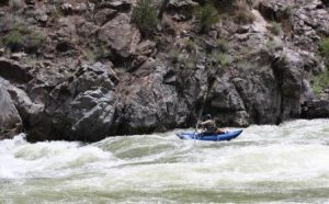 fly fishing cat rapids