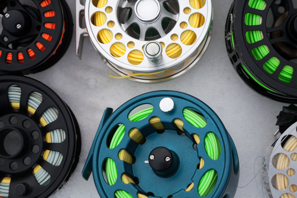 Fly Fishing Line Tips and Basics