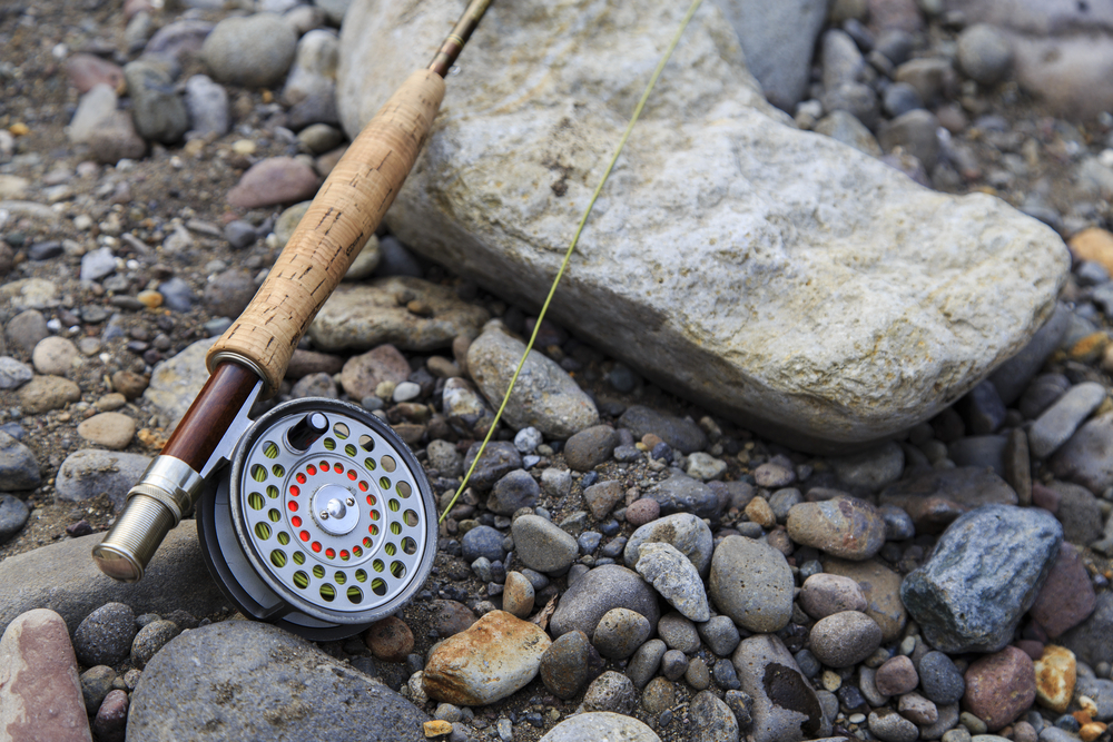 4 Essential Fly Fishing Rods Tips