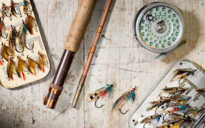 Fly Fishing Basics (Beginners Guide)