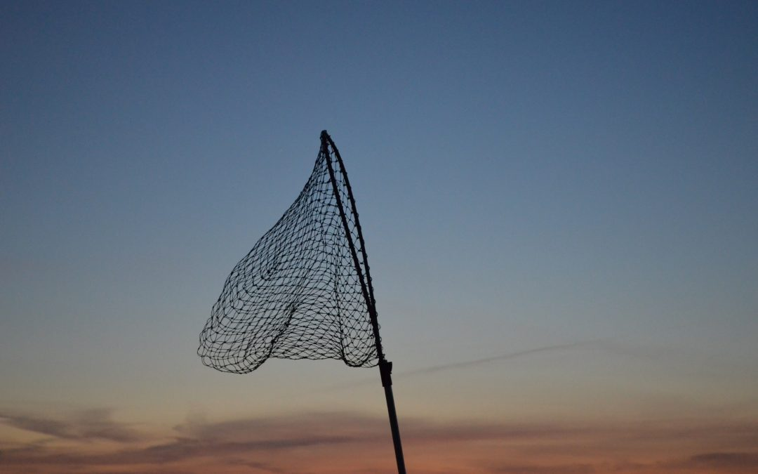 Top 3 Best Musky Nets To Boat Your Trophy